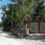 Jungle lots in a natural environment at Vive Riviera Maya development